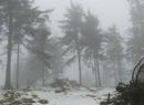 Góry Suche w śniegu i we mgle