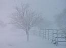 Śnieżyca w Katowicach
