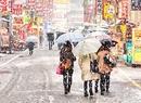 Tokio w śniegu