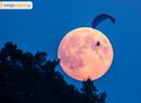 Tego o Księżycu jeszcze nie wiedzieliście