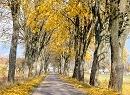 Jesień na łonie natury